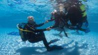 Engelliler su altı dünyasının  güzelliklerini keşfedecek